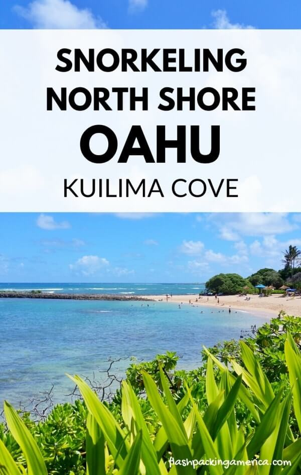 Kuilima Cove Snorkeling: Beginner-friendly Beach On North